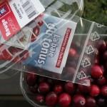 Sauf que contrairement aux framboises ou aux groseilles, les cranberries fraîches sont très dures. Pas question de les croquer natures !