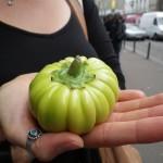 Ce n'est pas une drôle de tomate verte, mais une aubergine !