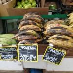 Bananes plantain : plus leur peau est noire, meilleures elles sont...