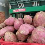 Si la patate douce a la peau rouge, c'est parce qu'elle renferme des anthocyanines, fortement antioxydants.