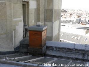 sur les toits9