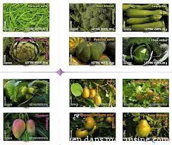 timbres légumes