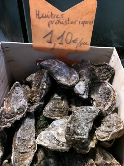 huîtres préhistoriques
