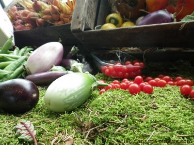 mini tomates mini aubergines