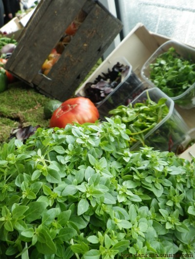 salades herbes