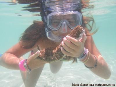 Rien de tel que la nage avec palmes pour s'amuser, s'affiner et faire de belles rencontres...