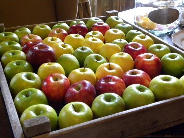 carré de pommes