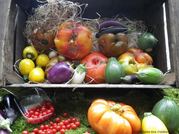 tomates et légumes multicolores