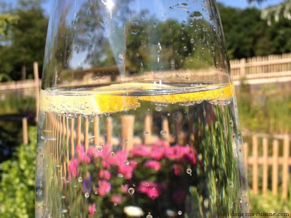 eau citron (3)